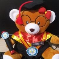 Boneka wisuda teddy bear coklat kacamata 32cm