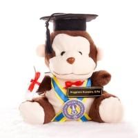 Boneka wisuda monyet / monkey coklat 27cm