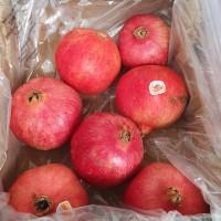 Buah Segar Delima Merah Red Pomegranate Jumbo Fresh Import Per Dus