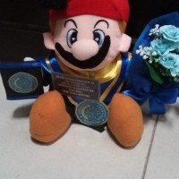 Boneka wisuda mario + buket bunga 40cm