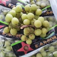 Buah Anggur Hijau Green Seedless Grapes Import Fresh