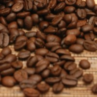 Arabika Roasted Bean