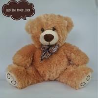 Boneka Teddy Bear komik lucu