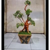 Jual Tanaman Hias Pohon Akar Bonsai Alami Bunga Plastik Imitasi Kode 07 Jakarta Selatan Rarapancoker Tokopedia