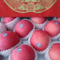 Apel Fuji Alfa Premium Fresh Manis Giftpack