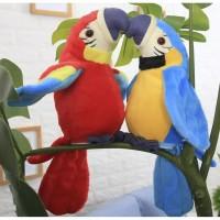speak birds talking parrot burung bicara