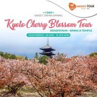Tur Jepang 1 Hari Kyoto Cherry Blossom Sakura