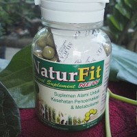 Naturfit herbal pencernaan kapsul metabolisme natur fit
