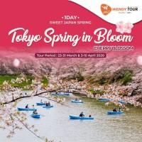 Tur Jepang 1 Hari Tokyo Spring in Bloom (Sakura) Infant