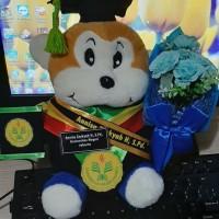 Boneka wisuda monkey/monyet 27cm lengkap