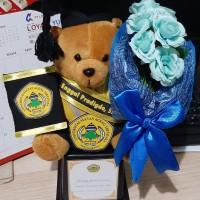 Boneka wisuda teddy bear piala lengkap