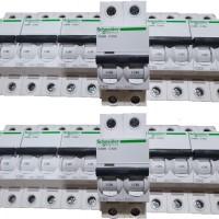 MCB Schneider Electric ( IC60N ) 2Phase
