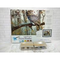 Paket Melukis Paint By Number Dimensions 73-91428 Owl Burung Hantu