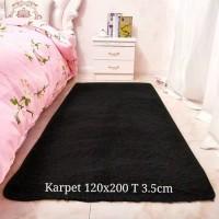 Karpet lantai bulu rasfur 120x200 T 3.5cm