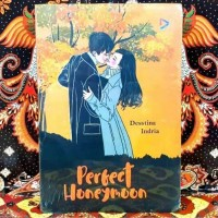 novel perfect honeymoon