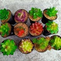 jual kaktus latex kaktus sukulen bunga plastik artificial