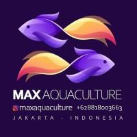 Jual Infusoria Pakan Burayak Ikan Siap Pakai Tanpa Perlu Dikultur Paket 50k Jakarta Timur Max Aquaculture Indonesia Tokopedia