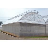 Rak Hidroponik Insect Net - ide tanaman hidroponik
