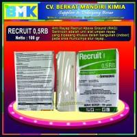 Recruit 0,5RB Sentricon (Anti Rayap)