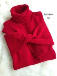 Sweater Turtle Neck