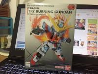 Gundam SD EX-STANDARD 011 Try Burning Gundam