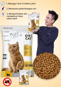 REPACK ORI CAT FOOD ORICAT 1KG SEJENIS BOLT MAXI JIO UNIVERSAL