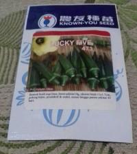 Benih Okra Hijau Lucky Five merk Known You Seed, original packing
