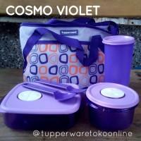 Tupperware Diskon Cosmo Violet
