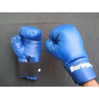 Sarung Tinju Berwyn Biru (8 oz)
