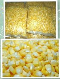 Jagung Manis Pipil / Pipilan fresh tanpa bahan pengawet