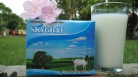 Susu Kambing Etawa SKYGOAT Original