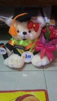 boneka wisuda teddy bear cream 27cm + buket bunga