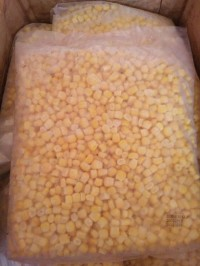 Sweet Corn ( Jagung Manis )