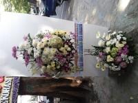 Standing Flower Murah