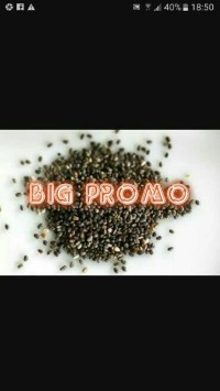 Organik Black Chia Seed / Chia Seeds 1000 gram