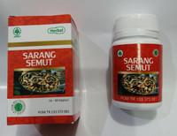 Kapsul Sarang Semut Papua herbalindo utama