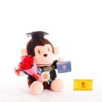 Boneka Wisuda Monyet Baby Monkey 24 cm + buket bunga flanel