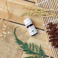 Rosemary Essential Oil Pure & Natural 5 ml