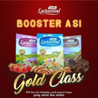 Lactamond Booster ASI / Booster ASI Susu Almond