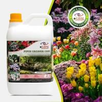GDM Pupuk Organik Cair untuk Tanaman Hias (kemasan 2 Liter)