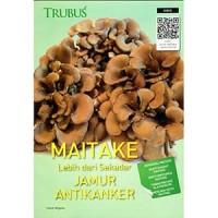 harga Maitake lebih dari sekadar jamur antikanker Tokopedia.com