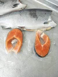 harga Salmon steak norwegian fresh Tokopedia.com