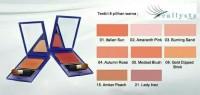 ORIGINAL Blush On Colour Contour Plus Inez Blusher with Brush