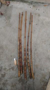 bambu cendani sisik naga / bahan joran