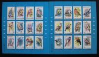 RUMANIA BIRD   1991   -   2   X   STAMP  SHEETLET WITH SAME NUMBER .