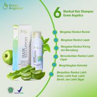 Shampoo Anti Rambut Rontok dan Hilangkan Ketombe Green Angelica Herbal
