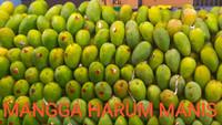 Mangga harum manis tua pohon ( bukan matang pohon ) pemalang