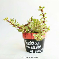 Pot Kaktus Mini Terracotta Quote Custom