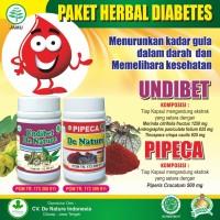 Obat Diabetes Penyakit Gula Herbal De Nature Undiabets dan Pipeca