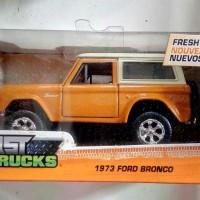 Diecast Metal 1973 Ford Bronco - Jada 1:32